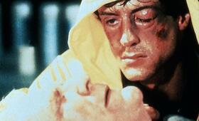 Rocky III - Das Auge des Tigers mit Sylvester Stallone und Burgess Meredith - Bild 269