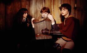 Harry Potter und die Kammer des Schreckens mit Emma Watson, Daniel Radcliffe und Rupert Grint - Bild 10
