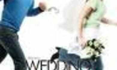 Blind Wedding - Hilfe, sie hat ja gesagt! - Bild 2