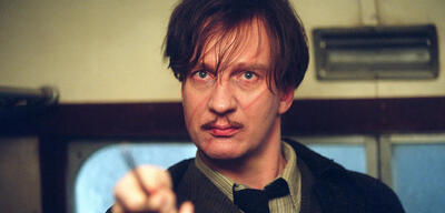 David Thewlis in Harry Potter