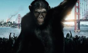 Planet der Affen: Prevolution - Bild 17