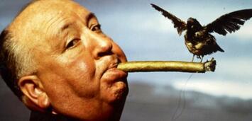 Bild zu:  Alfred Hitchcock beim Dreh von Die Vögel.