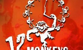 12 Monkeys - Bild 34