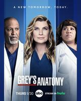 Grey's Anatomy - Staffel 18 - Poster