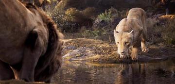 Der König der Löwen: Ikonische Szenen - aber anders?