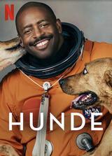 Hunde - Staffel 2 - Poster