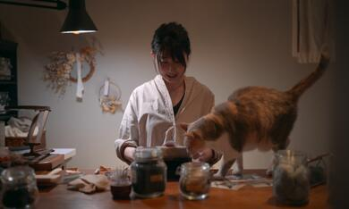 Cat People, Cat People - Staffel 1 - Bild 3
