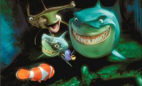 Findet Nemo - Bild 3