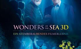 Wonders of the Sea mit Arnold Schwarzenegger und Jean-Michel Cousteau - Bild 1