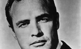 Marlon Brando - Bild 13
