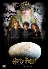 Harry Potter und ein Stein