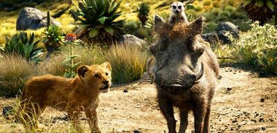 Seth Rogen und sein Gesang in Der König der Löwen