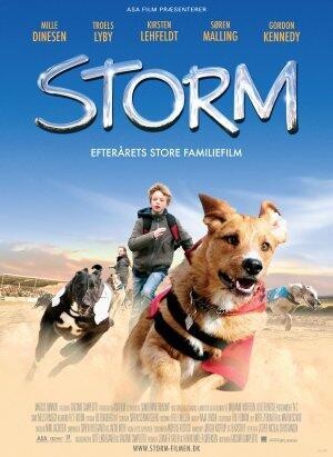 Storm Sieger Auf Vier Pfoten
