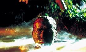 Apocalypse Now mit Martin Sheen - Bild 67