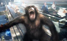 Planet der Affen: Prevolution - Bild 10