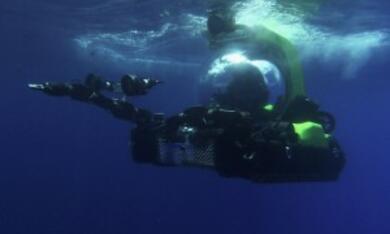 Aliens der Meere - Bild 2