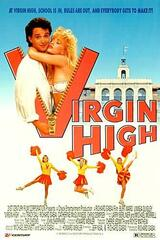 Virgin High - Poster