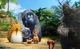 Die Dschungelhelden - Das große Kinoabenteuer - Bild 2