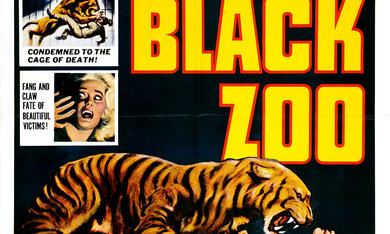 Black Zoo - Bild 2