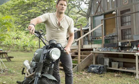 Jurassic World mit Chris Pratt - Bild 72
