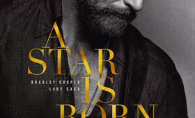 A Star Is Born mit Bradley Cooper - Bild 22