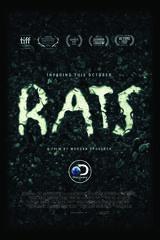 Rats - Poster