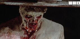Woodoo - Die Schreckensinsel Der Zombies Stream
