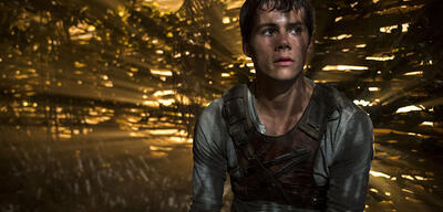 Dylen O'Brien in Maze Runner