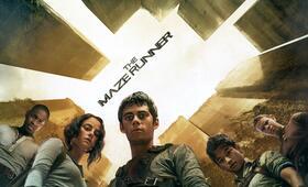 Maze Runner - Die Auserwählten im Labyrinth mit Kaya Scodelario, Dylan O'Brien und Thomas Brodie-Sangster - Bild 57