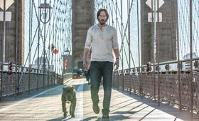 John Wick: Kapitel 2 mit Keanu Reeves - Bild 172