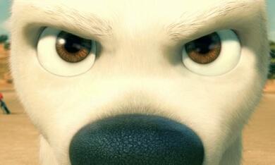 Bolt - Ein Hund für alle Fälle - Bild 9
