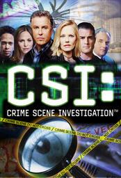 CSI: Den Tätern auf der Spur - Poster