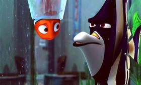 Findet Nemo - Bild 9