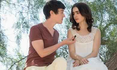To the Bone mit Lily Collins - Bild 8