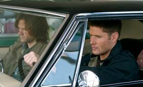 Staffel 8 mit Jensen Ackles und Jared Padalecki - Bild 49