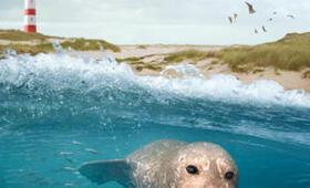 Die Nordsee - Unser Meer - Bild 1