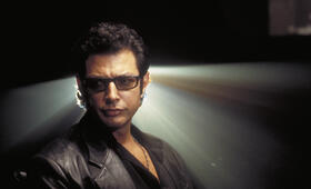 Jeff Goldblum in Jurassic Park - Bild 37