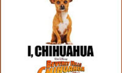 Beverly Hills Chihuahua - Bild 6