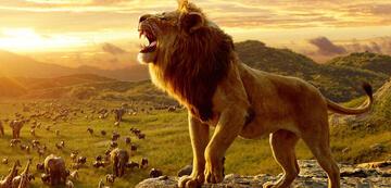 Der König der Löwen: Viel Gebrüll, nichts dahinter?
