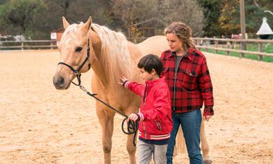 Reiterhof Wildenstein - Der Junge und das Pferd mit Klara Deutschmann - Bild 2