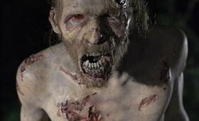 The Walking Dead - Bild 77