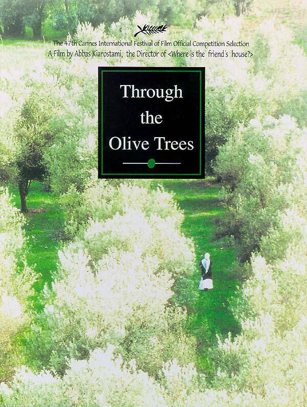 Quer durch den Olivenhain