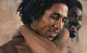 Marley - Bild 23