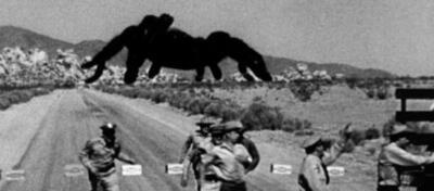 Jack Arnolds Spinnen-Horror Tarantula.