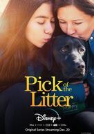 Hundeleben - Vom Welpen zum Blindenhund