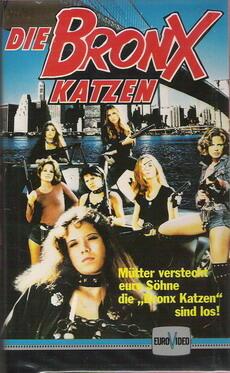Die Bronx-Katzen