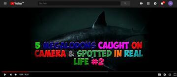 Seriöses Video über Megalodon-Sichtungen