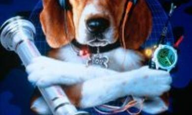 Cats & Dogs - Wie Hund und Katz - Bild 10