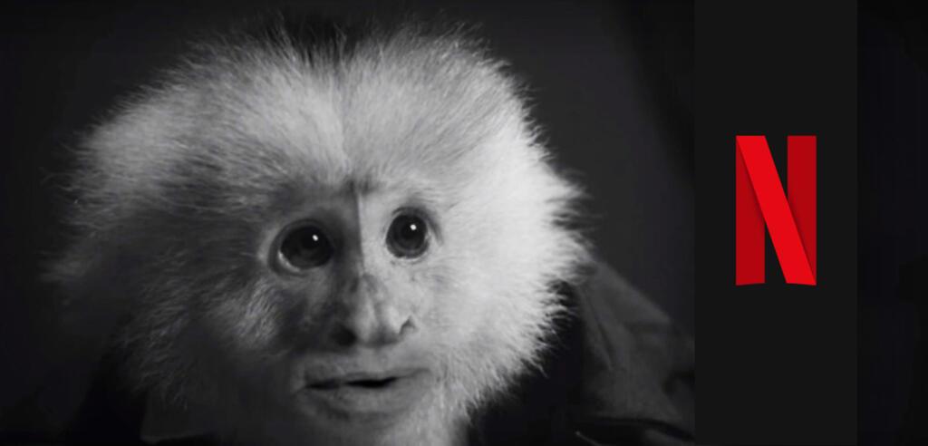 Bild zu Netflix-Überraschung: Kultregisseur David Lynch veröffentlicht neuen Film