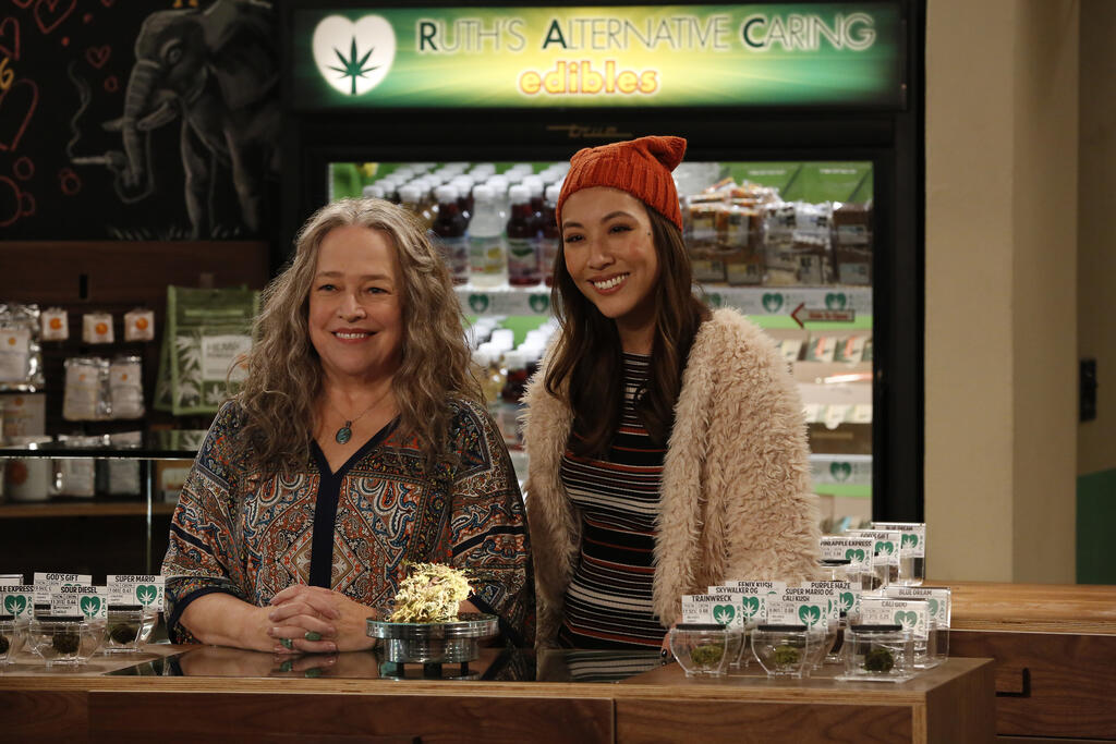 Disjointed - Staffel 1